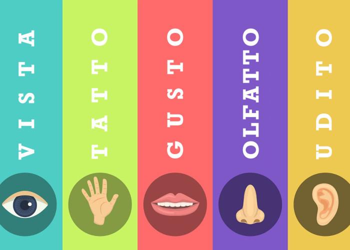 Marketing e i cinque sensi: Quali coinvolgere?